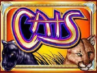 Cats Online Slot Free Play