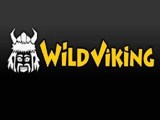 Wild Viking Online Slot Free Play